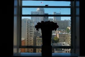 Letters of Courage, Neuro Visit #1, 2011 - Catherine Herrera, Flor de Miel Fotos