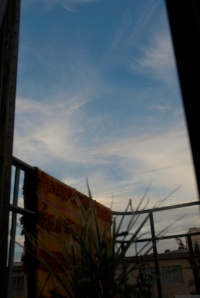 'In Time, From My Window Series,' 2011 photo by Catherine Herrera 2010 1 of 1