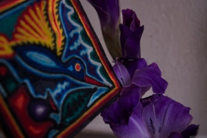 'Purple, From My Window Series, photo by Catherine Herrera 2011