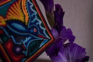 'Purple, From My Window Series, photo by Catherine Herrera 2011