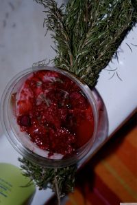 Strawberry Healing Waters'  2010-  Photo by Catherine Herrera 2010